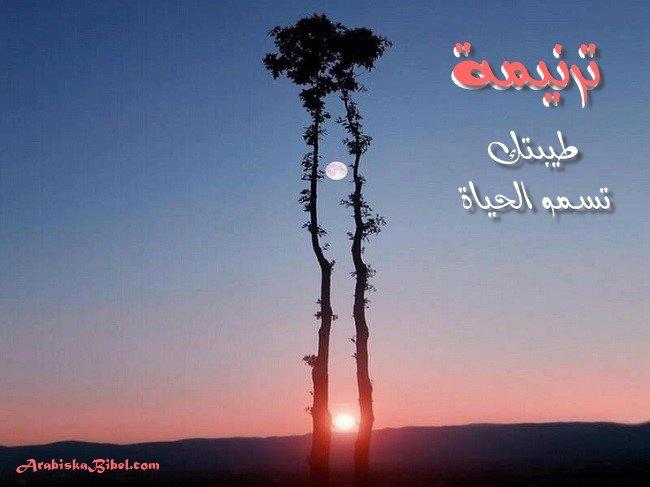 Photo of ترنيمة طيبتك تسمو الحياة – تجمع يسوع فرحي