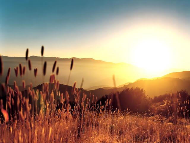 صلاة الصباح تقدم في بداية النهار وقت طلوع الشمس
