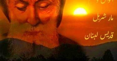 أقوال وحكم مار شربل قديس لبنان