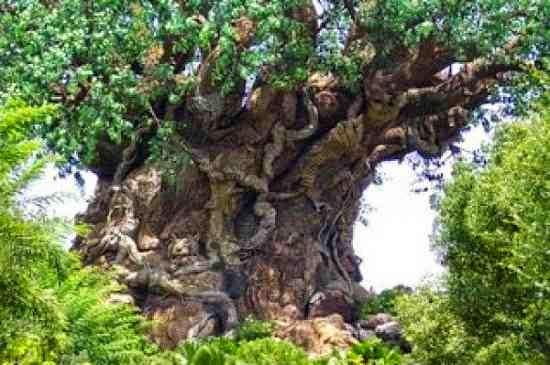 قصة الشجرة التي يسكنها شيطان ويعبدها الناس