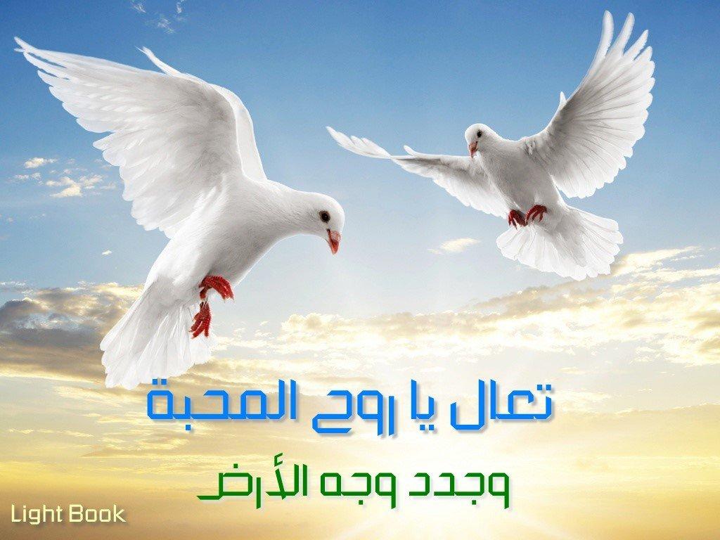 صلاة الكنيسة هلم أيها الروح القدس وأرسل من السماء شعاع نورك - جومانا مدور