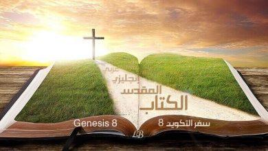 Photo of Genesis 8 English-Arabic with Audio | Read – Listen (KJV)