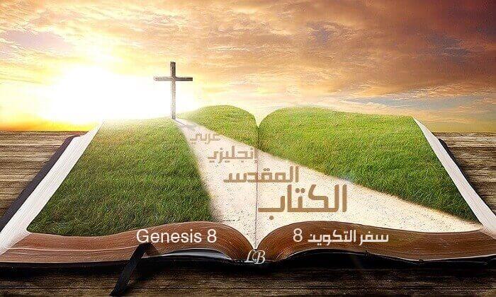 Genesis 8 English-Arabic with Audio   Read - Listen (KJV)
