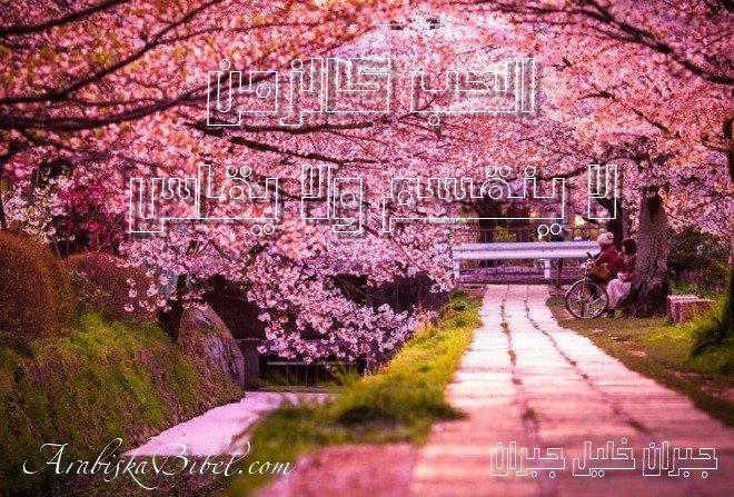 أجمل أربعين حكمة من أقوال وروائع الفيلسوف جبران خليل جبران