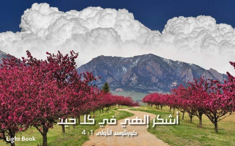 تقدمات شكر محبة إكرام وإجلال للرب الخالق صانع السموات والأرض