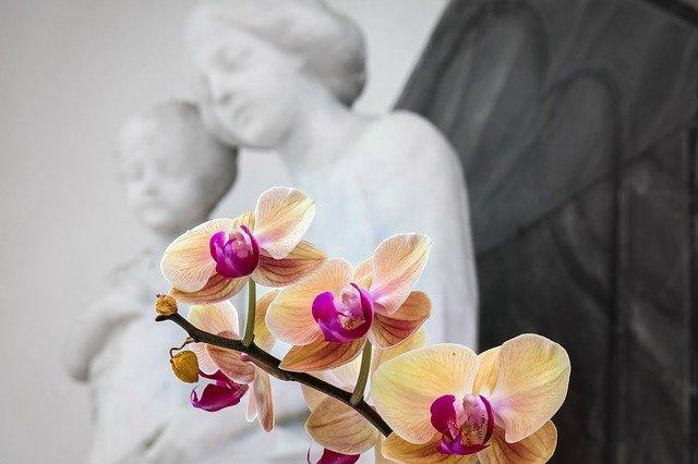 إيمان وثقة الرجل الحلواني بالرب أعاد له زوجته من الموت - قصة حقيقية