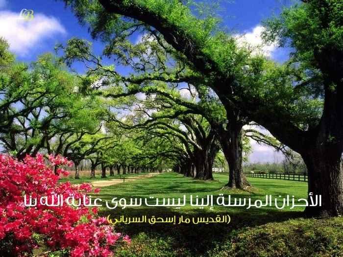 Photo of أقوال الأباء القديسين عن الضيقات العفة والطهارة