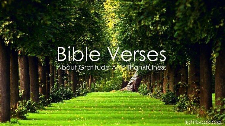 Photo of Bible Verses about Gratitude and Thankfulness 3 (English-Arabic)
