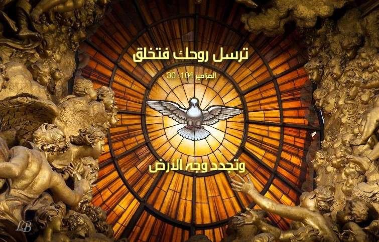 Photo of آيات عن الخلق 2 Creation من الكتاب المقدس عربي إنجليزي