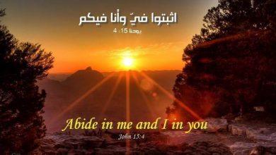 Photo of Bible Verses about Spiritual Growth (English-Arabic)