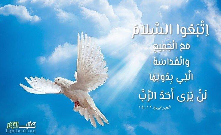 Photo of آيات عن البركة والسلام 5 Peace – عربي إنجليزي