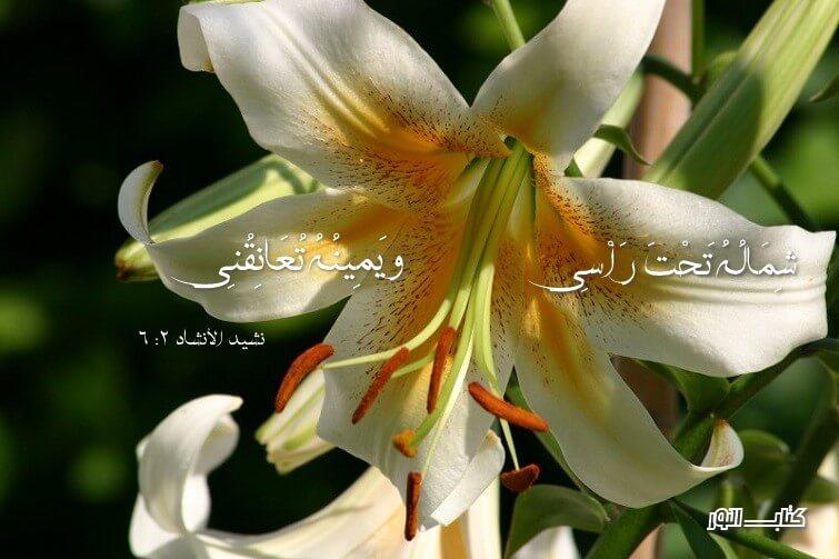 الزواج والجنس ( 3 ) Mariage Et Le Sexe آيات من الكتاب المقدس عربي فرنسي