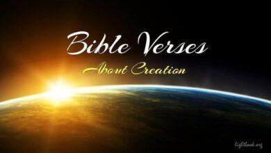 Photo of Bible Verses aboutCreation 2 (English-Arabic)