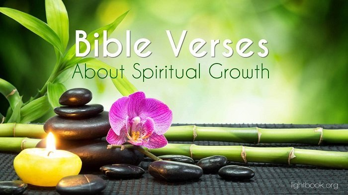 Bible Verses about Spiritual Growth 2 What Does the Bible Say