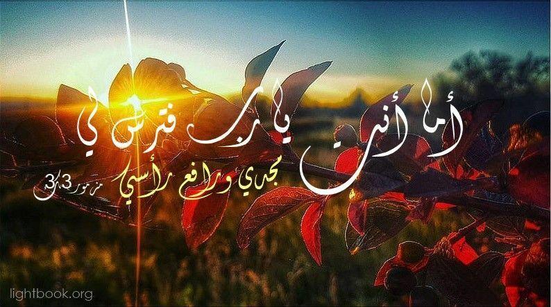 آيات عن الوحدة والاكتئاب Loneliness and Depression من الكتاب المقدس عربي إنجليزي
